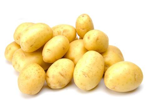 Pomme de terre traitement contre les doryphores - Traitement pomme de terre ...